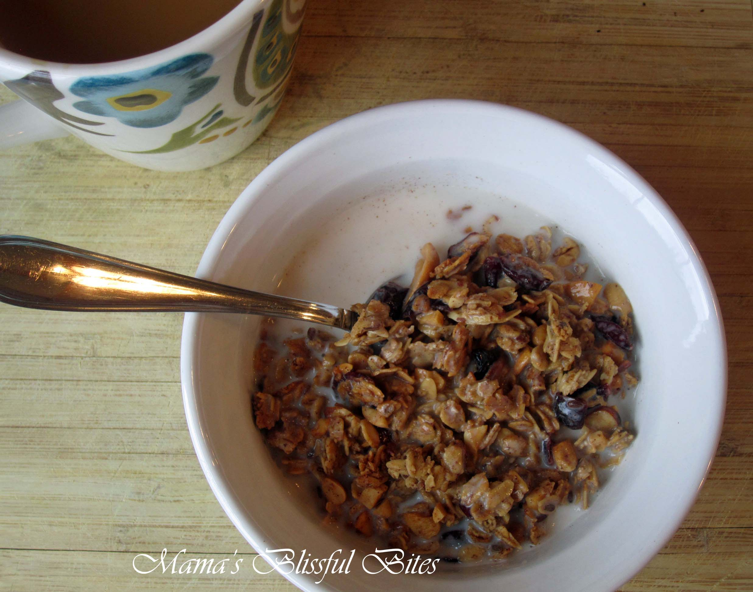 Cherry Oat Cereal bowl