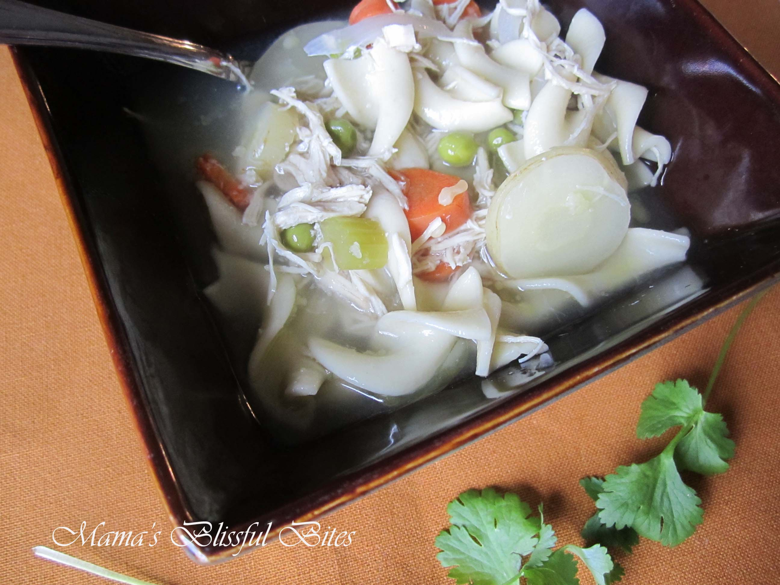 Chicken Noodle Soup with Ginger