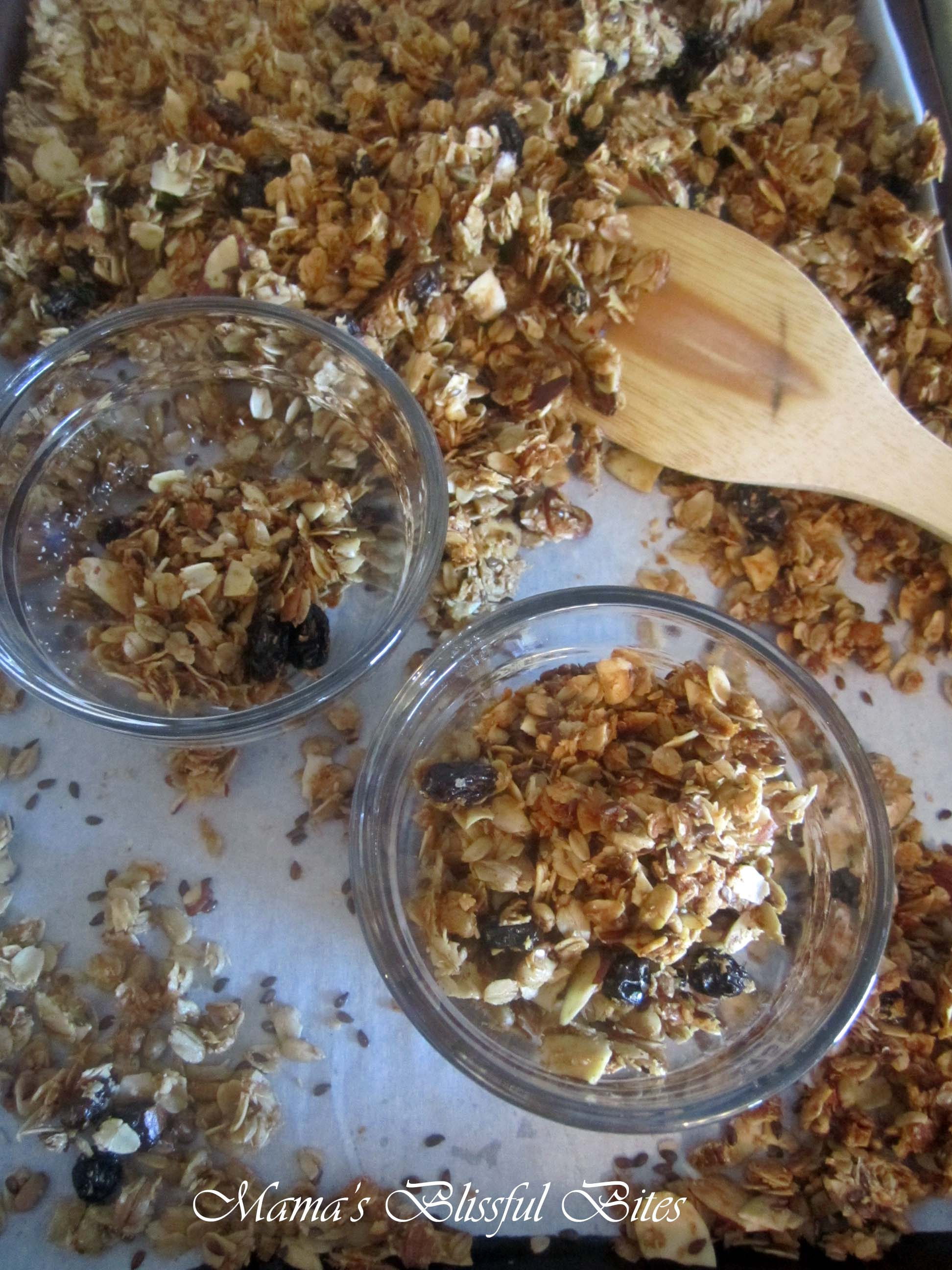 Raisin Almond Granola